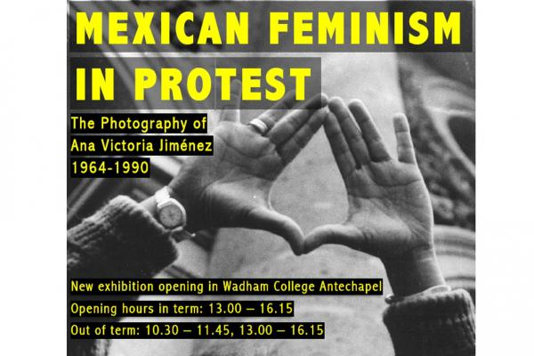 mexican feminism in protest